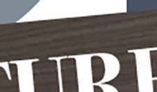 IDB Logo Zoomed In for Detail